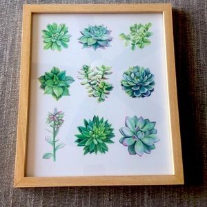 Urban Outfitters Botanical Plant Wall Art framed